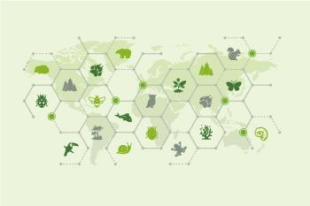 生態系ネットワーク